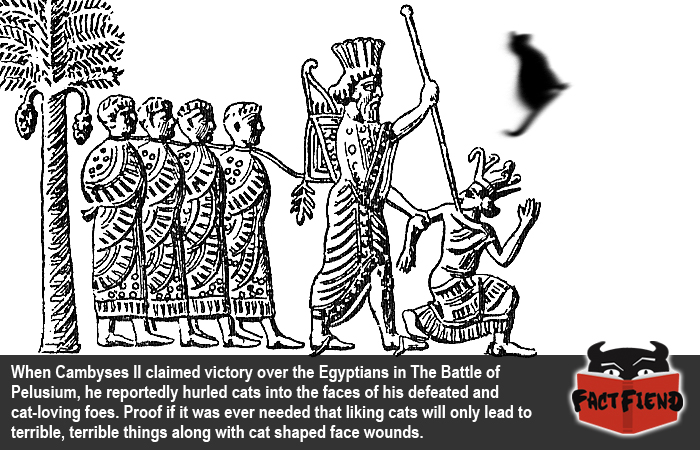 Cambyses II, the Cat Throwing King of Persia