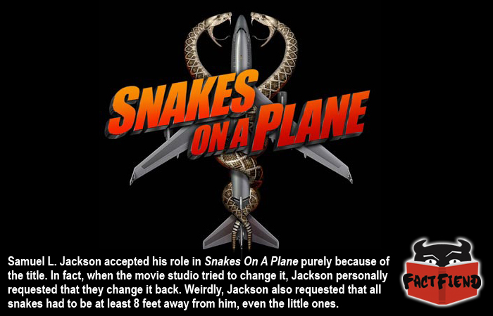 Related Keywords & Suggestions For Snakesonaplane