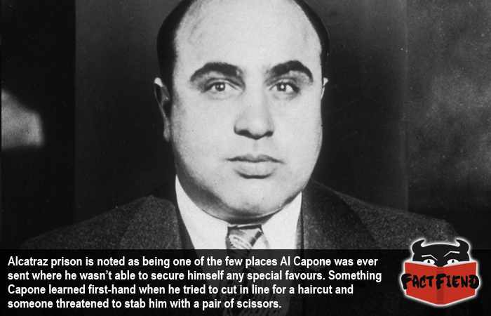a brief history of the life of al capone an american gangster The al capone is one of the most popular assignments among students' documents if you are stuck with writing or missing ideas, scroll down and find inspiration in the best samples al capone is quite a rare and popular topic for writing an essay, but it certainly is in our database.