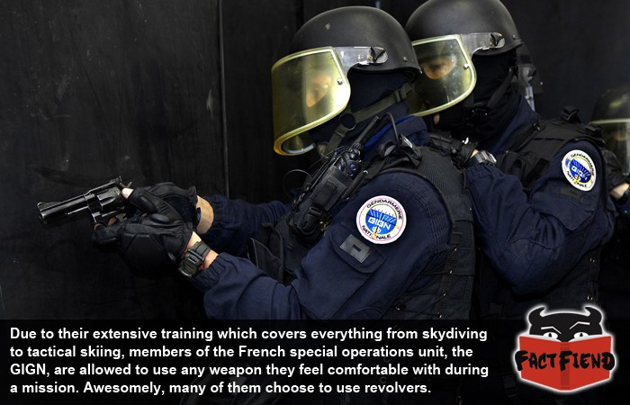 The Gign Still Use Revolvers To Take Out Bad Guys Fact Fiend