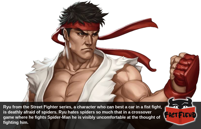 Ryu From Street Fighter Hates Spiders Fact Fiend